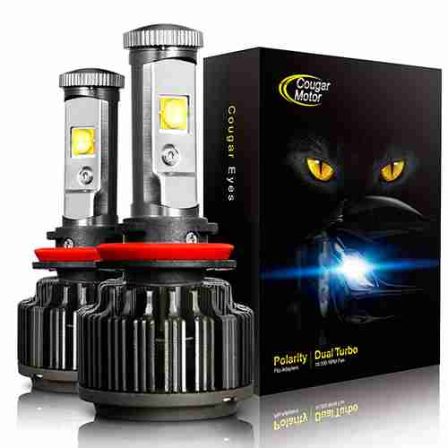 Best H11 Bulbs – Halogen & LED Headlight: The Definitive Guide