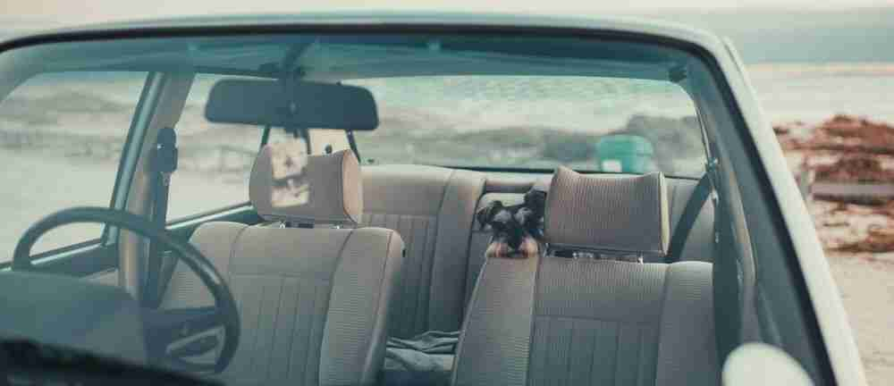 Cleaning car seats: the right way to remove stains
